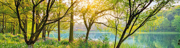 Spring_Lake_schmal